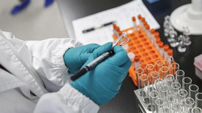 vaccino covid piemonte