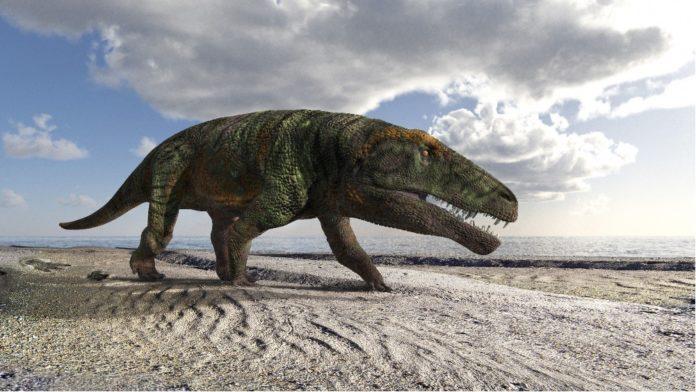 Scoperte orme fossili di rettile gigante sulle Alpi cuneesi